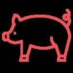 pig ridge