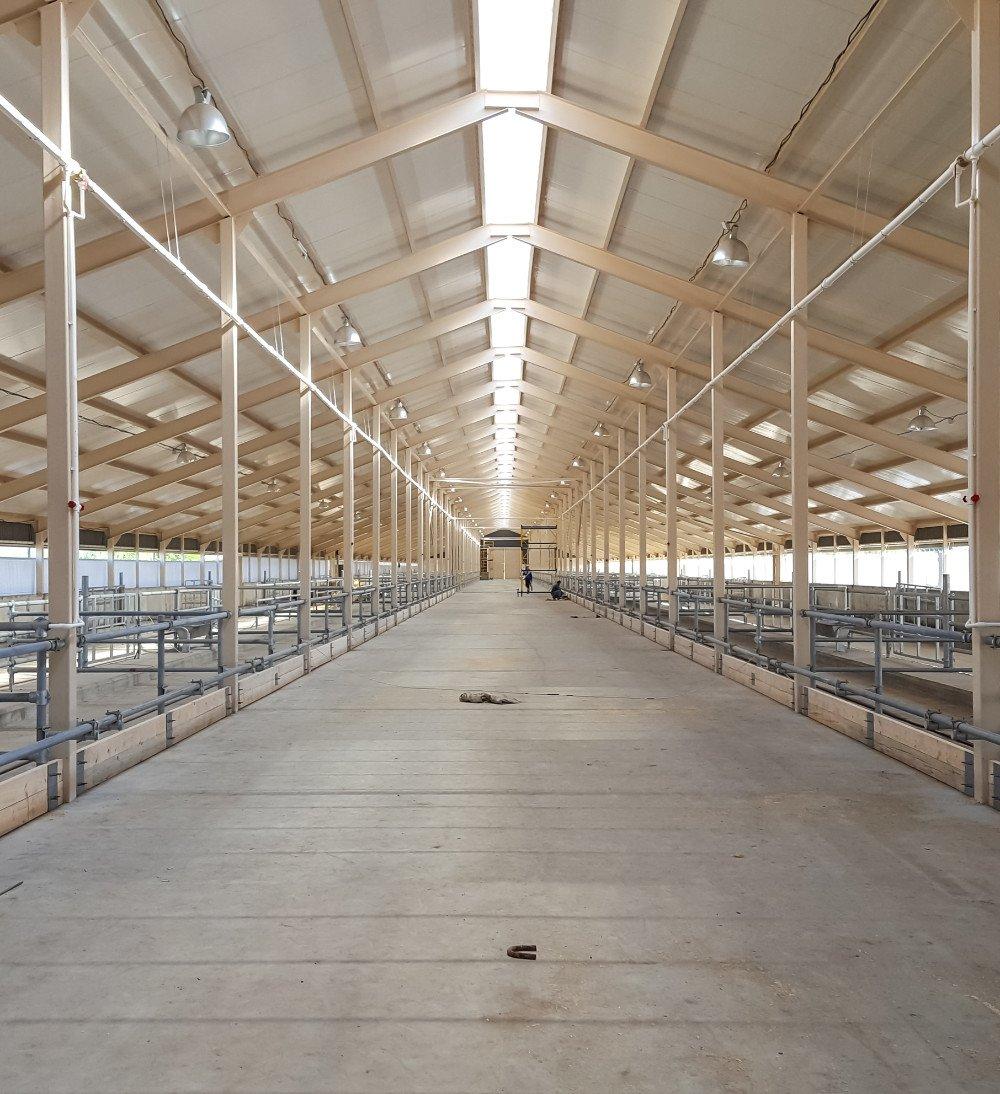steel barn vertical